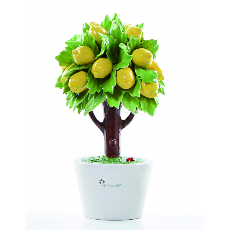 Gli alberelli albero limone capodimonte profumatore lagru for Albero limoni in vaso