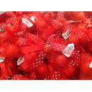 Bomboniera LAUREA Veletto Papillon Rosso