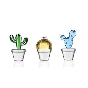 Ichendorf Cactus in vetro Bomboniera Completa di confezione matrimonio comunione laurea battesimo