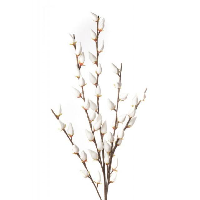 L'Oca Nera 1P110 Salix Caprea in Eva-POLIETILENE ESPANSO 85h verde Fiore Artificiale