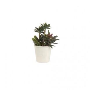 L'Oca Nera 1N13 Pianta Artificiale Cactus Ø16,5x30,5h